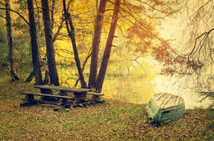 Autumn lake in golden sunlight Stock Image