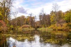 Autumn Lake hermoso Fotografía de archivo libre de regalías