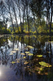 Autumn lake landscape. Warsaw, Poland royalty free stock photo