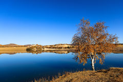 Autumn lake landscape Stock Photo