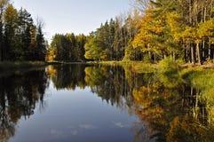 Autumn lake landscape Royalty Free Stock Photos
