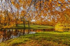 Autumn lake landscape. Autumn lake, golden landscape, bright orange leaves on blue sky, transparent water, green and orange colors stock images