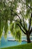 Autumn on the Lake Ledro. Trentino Italy Stock Photography
