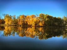 Autumn Lake. Mirrored Lake in Autumn Royalty Free Stock Photo