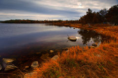 Autumn Lake in the morning Royalty Free Stock Images