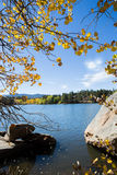 Autumn Lake Mountain with colorful leaves Royalty Free Stock Images