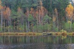 Autumn. At the Lake Paezeris in Lithuania stock photography
