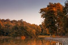 Autumn lake. In the park Royalty Free Stock Photos