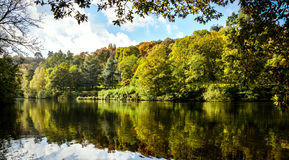 Autumn lake. This picture was taken at Winkworth Arboretum Oct Royalty Free Stock Photos