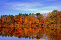 Autumn lake reflection. Colorful fall trees reflecting on the lake stock photos