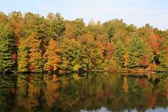 Autumn Lake Reflections Royalty Free Stock Photos