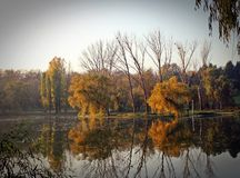 Autumn lake reflexion Royalty Free Stock Image