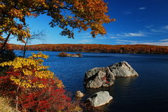 Autumn lake with rocks and trees. In yellow and red color royalty free stock image