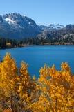 Autumn lake Royalty Free Stock Image