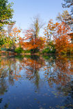 Autumn lake scene Stock Image