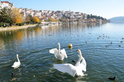 Autumn lake scene Stock Photo
