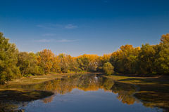 Autumn lake scenery Royalty Free Stock Photos