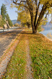 Autumn by the lake. Season changing in coeur d Alene Idaho on the centennial trail next to the lake stock image