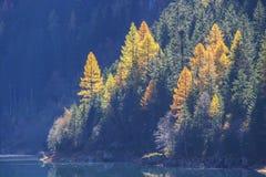 Autumn at lake Stillup Stock Photos