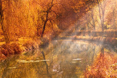 Autumn lake. Autumn trees and lake in forest park with sun rays and misty water stock photos