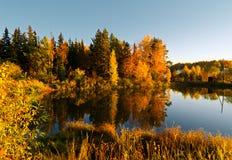 Lake in sunset rays. Autumn landscape Stock Photos