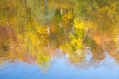 Autumn lake surface. Reflecting autumn forest Stock Image