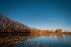 Autumn lake surrounded by bare trees. Royalty Free Stock Images