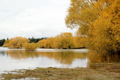 Autumn in Lake Tekapo, New Zealand Royalty Free Stock Images