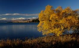 Autumn at Lake Tekapo NZ (10) Royalty Free Stock Photos