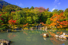 Autumn at the lake of tenryu-ji temple Royalty Free Stock Images