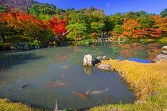 Autumn at the lake of tenryu-ji temple Royalty Free Stock Photography