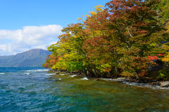 Autumn in the Lake Towada Stock Images