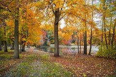 Autumn Lake Trail imagens de stock royalty free