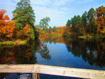 Autumn on lake Royalty Free Stock Photo