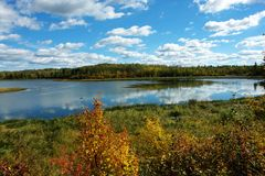 Autumn lake view Royalty Free Stock Photos