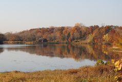 Autumn Lake View. View of lake in the Autum, Chaska, Minnesota with brown, red, and yellow trees stock photos