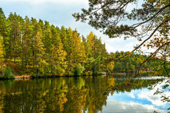 Autumn lake view. Lake and forest landscape in autumn Stock Photography
