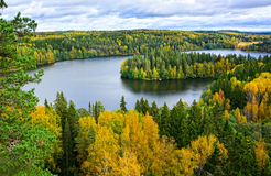Autumn lake view IV. Lake and forest landscape in autumn Royalty Free Stock Photo