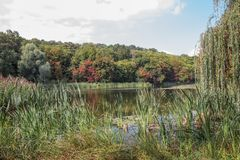 Autumn lake view in a park. Landscape. First touch of bright seasonal colors. Autumn lake view in a park. Landscape. First touch of bright seasonal autumn colors stock image