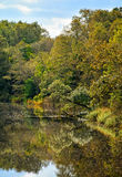 Autumn lake view v. Lake and forest landscape in autumn Stock Photography