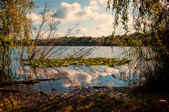 Autumn Lake. Walking inside the Forest in Nordrhein - Westfalen Germany. Lake! Fall Stock Images