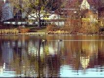 Autumn on the lake stock photography