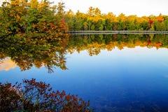 Autumn Lakeshore Stock Image