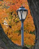 Autumn Lamp Post Royalty Free Stock Photo