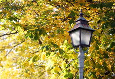 Autumn Lamp Post. Lamp post with autumn colors in background with copy space stock image
