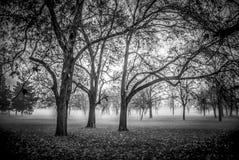 Autumn Landscape à Belgrade photographie stock
