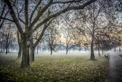 Autumn Landscape à Belgrade photographie stock libre de droits