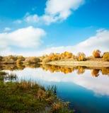 Autumn Landscape Árboles amarillos, cielo azul y lago Foto de archivo libre de regalías