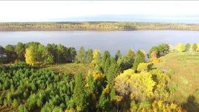 Autumn Landscape Árvores do outono no banco do rio no dia ensolarado video estoque