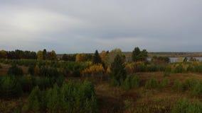 Autumn Landscape Árvores do outono no banco do rio no dia ensolarado vídeos de arquivo